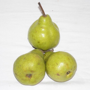Pears Small