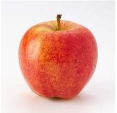 apple-gala-each